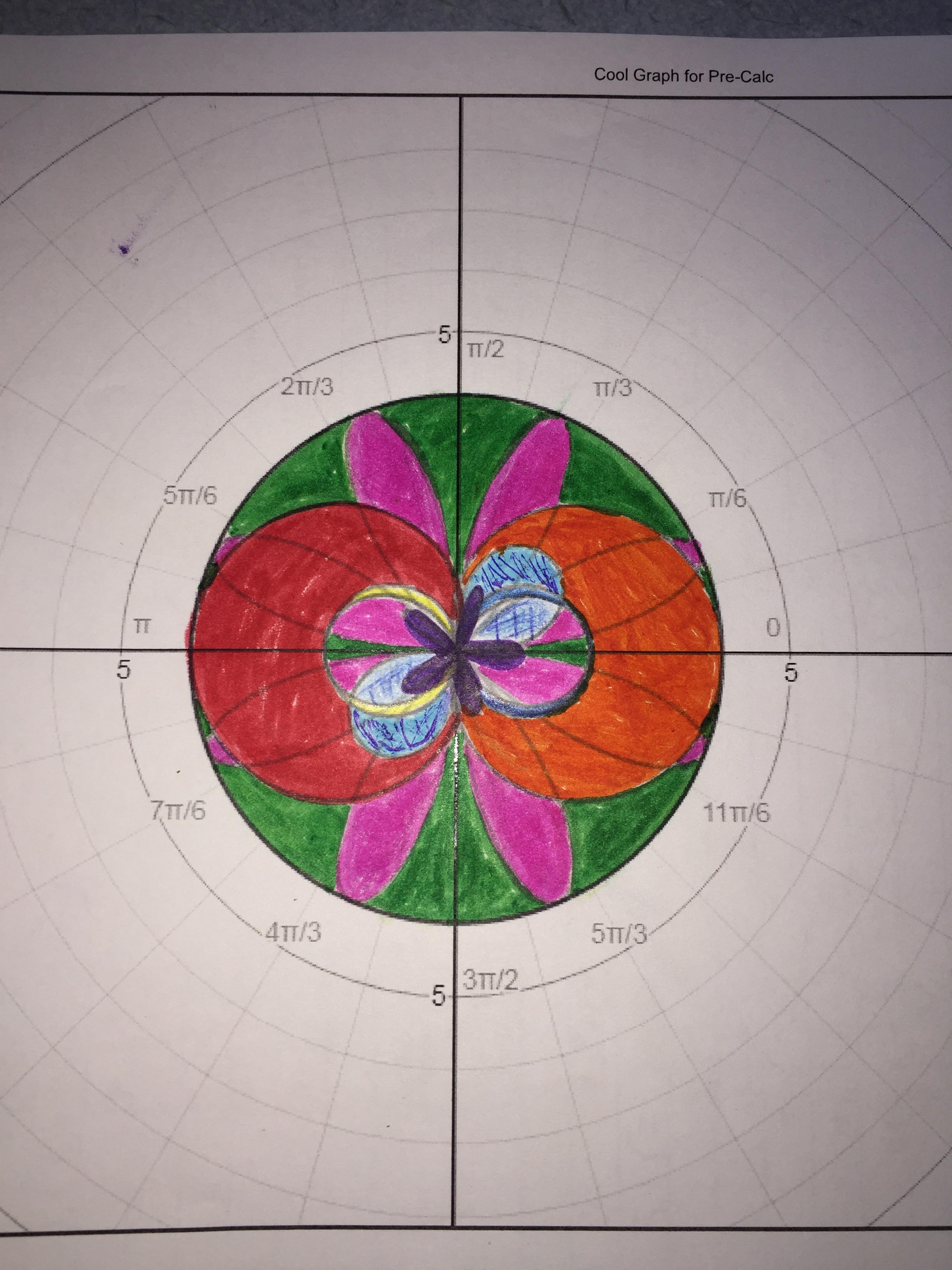 Finished product of polar graph picture